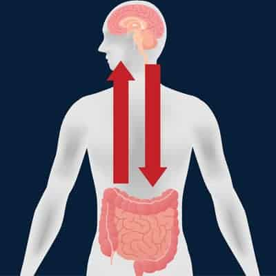 Gut-Brain Connection with Probiotics where good bacteria affects mental health - ProVen