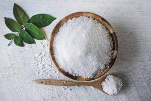 How salt affects our gut bacteria