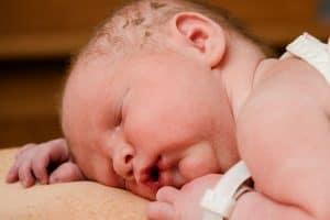 Baby Gut Health | Pro-Ven Probiotics