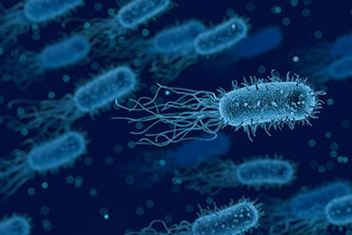 The TriPhase and StabilityMax technology used to manufacture ProVen Probiotics products,