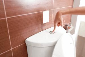 What healthy poop looks like?