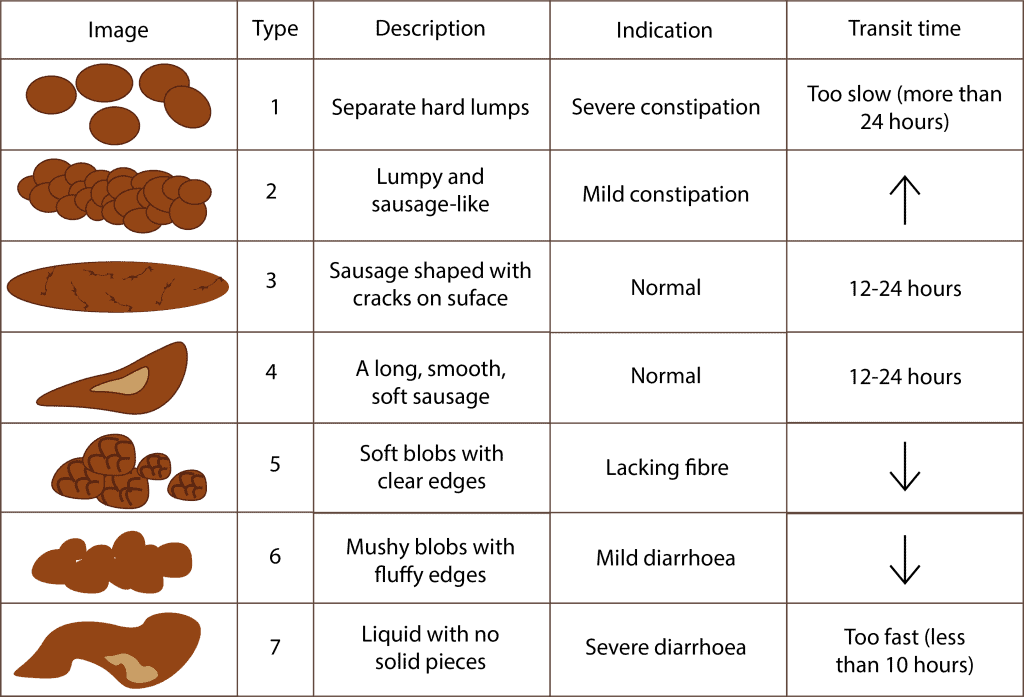 The Bristol Stool Chart - ProVen Probiotics