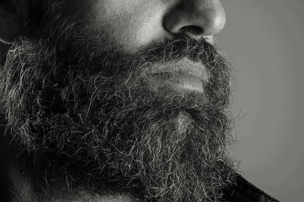 Men's Health – It's Movember